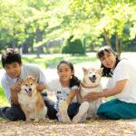 〝保護犬と幸せになる〟という選択肢④チャタロー&なな(柴犬)